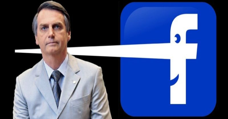 bolsonaro_fake_book800x350.png