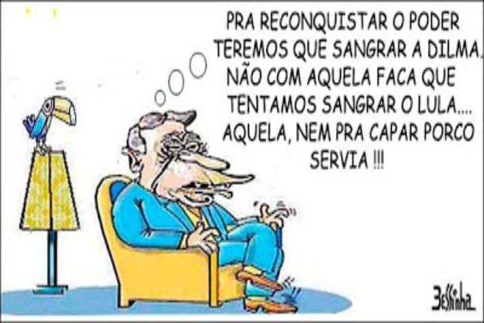 charge bessinha psdb fhc