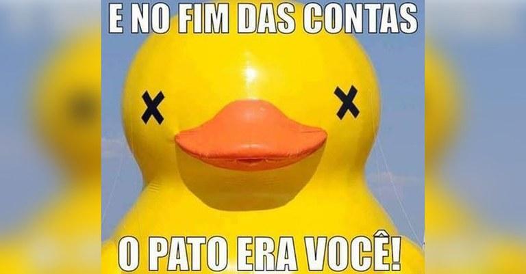 Pato.jpg